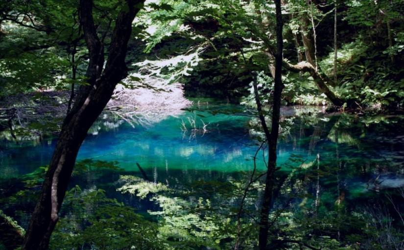 Shirakami mountains